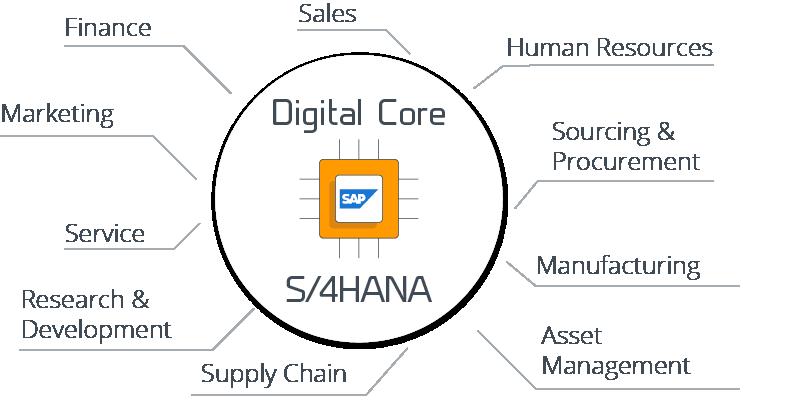Komplettbetreuung von SAP S/4HANA